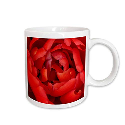 (3dRose Stamp City - flowers - Macro photograph of bright red tulip petals. - 11oz Two-Tone Yellow Mug (mug_309951_8) )