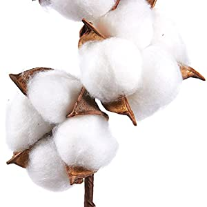 Cotton Stems - Artificial Cotton Flowers, Farmhouse Style Display Vase Filler, Rustic Decorations for Home, Office 4