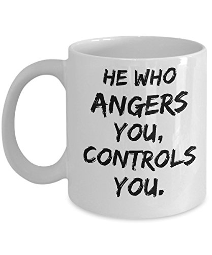 He Who Angers You Controls You - Motivational - 11oz coffee mug - Great gift idea for BFF/Friend/Coworker/Boss/Secret Santa/birthday/Husband/Wife/girlfriend/Boyfriend (Anger Costume Ideas)