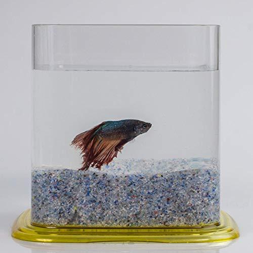 Aquariaglass Arrecife arena de vidrio para decoración de acuarios, peceras y terrarios 2 kg cristal color multicolor: Amazon.es: Productos para mascotas