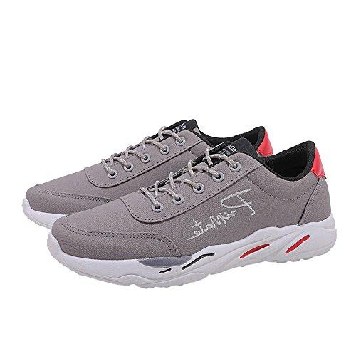 Zapatos Hombre BUIMIN - Calzado Deportivo Casual De Lona Novedad Moda Guay Cómodo Color Negro/Gris/Rjo Talla 39/40/41/42/43/44 (40, gris)