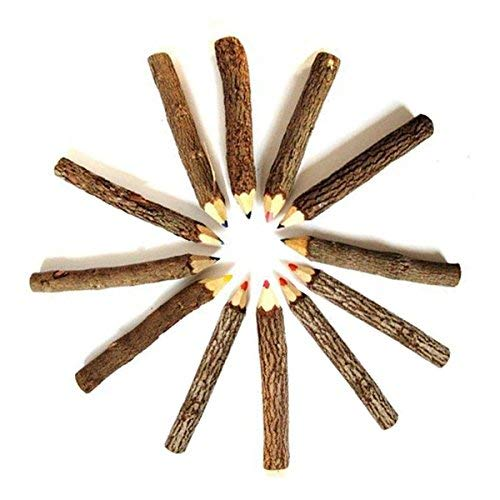 Pro Pencil NewTwiggys Branch Twig Pencil 10-Count Bagged multicolour tree branch Wood Pencils 7 Size