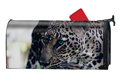Verna Christopher Green Eye Tiger Custom Magnetic Mailbox Cover Mail Wrap for Large Mailboxes Size 9