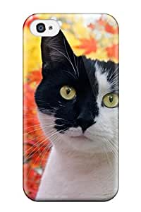 TYH - For ipod Touch 4 Premium Tpu Case Cover Cat In Autumn Protective Case phone case