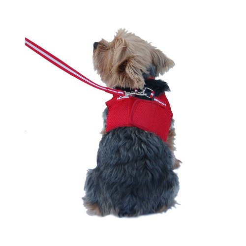 Anima Red Mesh Jersey with Red Trim Harness and Leash Set, Large, My Pet Supplies
