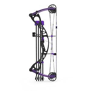 Amazon.com: Arco Compuesto 1: 3 Modelo A Escala Kit: Sports ...