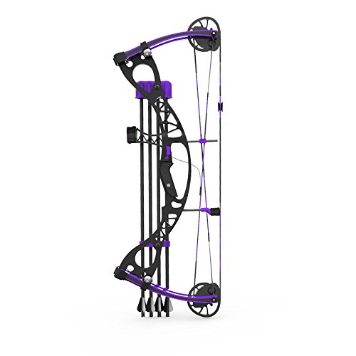 Compound Bow 1:3 Scale Model Kit