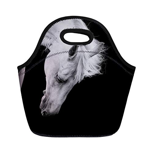 Semtomn Neoprene Lunch Tote Bag Head White Horse on Black Detail Equestrian Hair Melancholy Reusable Cooler Bags Insulated Thermal Picnic Handbag for -