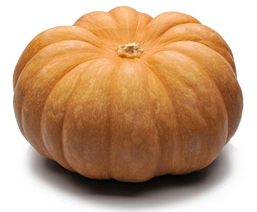 (Fairytale Pumpkin Seeds - One of The Most Intereting and Decorative Pumpkins as Well as Delicious )