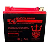 Chrome Battery YTX12-BS High Performance Maintenance Free Sealed AGM Motorcycle Battery Replacement by Neptune