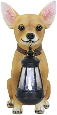 Ebros Picante Mexican Chihuahua Dog Decor Path Lighter Statue 12.5 Tall with Solar LED Light Lantern Lamp This Little Light of Mine