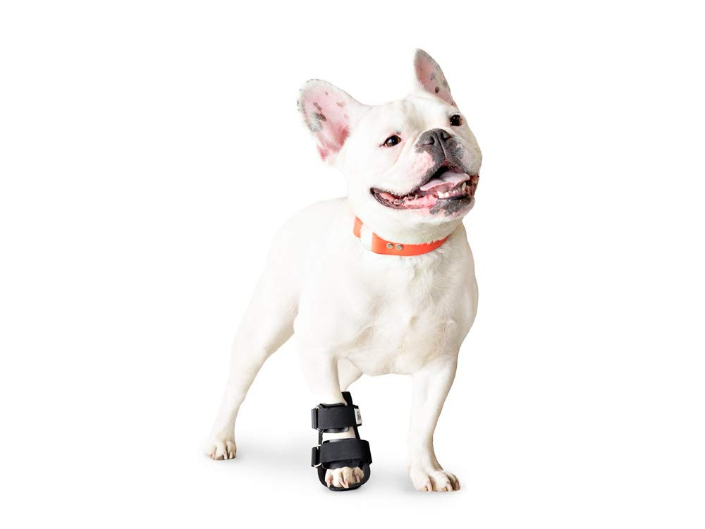 Walkin' Pet Splint for Dogs, Canine Bootie Style Leg Splint by Walkin'