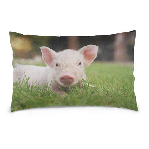 - HYTCSY Piglets On The Grass Pillow Case Printed Standard Size (20
