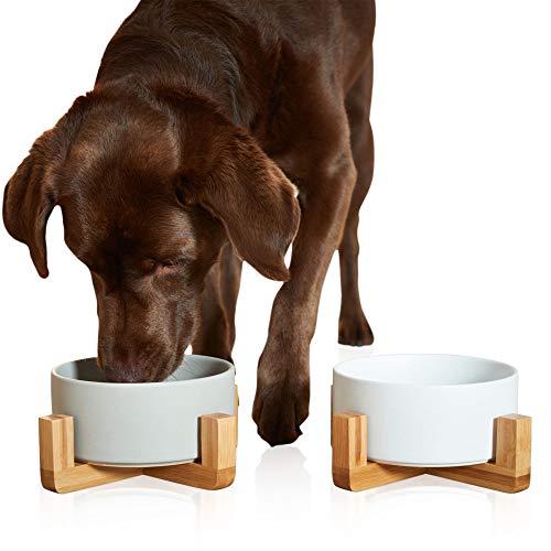 PiuPet® Napf für Katzen und Hunde - 850 ml - Futternapf Katze - Futternapf Hund - Hundenapf Grosse Hunde