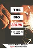 img - for The Big Spark: Instant Action Steps To Spark Your Business book / textbook / text book