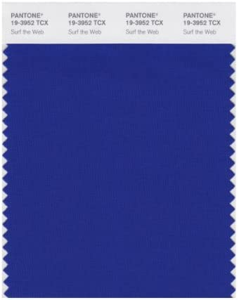 PANTONE Smart 19 3952X Color Swatch Card, Surf The Web