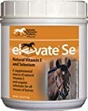 Kentucky Performance Prod Elevate Se Natural Vitamin E and Selenium Powder for Horses, 2 Pound Container