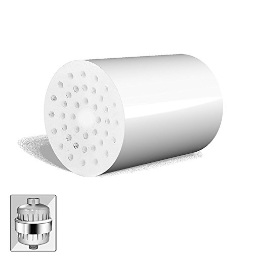 CaptainEco 10-Stage Advanced Cartridge Replacement for Water Filtration, Fits All the Similar Shower Filter Brands, Best Chlorine Shower Head (Natural Iron Finish Bath)