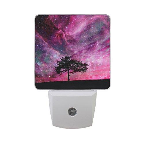 Landscape Lighting Universe in US - 1