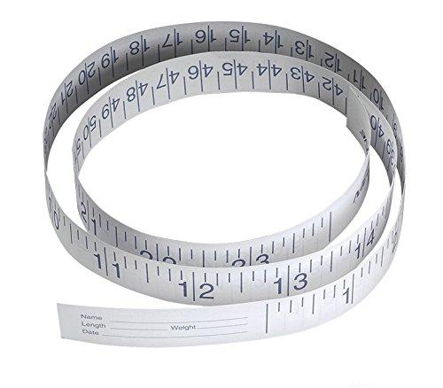 Medline NON171333 Paper Measuring Tape, 72'' (Pack of 500) by Medline