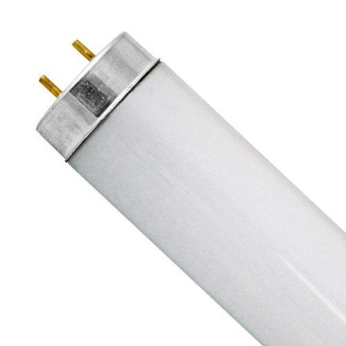 Sylvania F25T12 / CW / 28-25 Watt - 28 in. - T12 - Appliance Bulb - Cool White 4200K 22527
