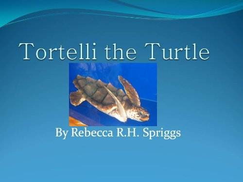 Tortelli the Turtle