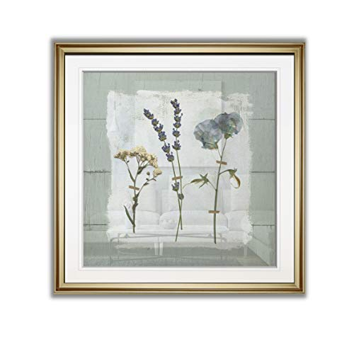 Wexford Home PF024-18763-2424GF Pressed Shiplap II Abstract Artwork Flower Pictures Framed Wall Art Giclee Prints Landscape Paintings, Home Decor, 24x24, (Flower Pictures Framed)