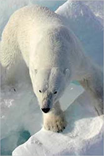 Polar Bear in the Arctic (For the Love of Animals): Blank 150 page lined journal for your thoughts, ideas, and inspiration
