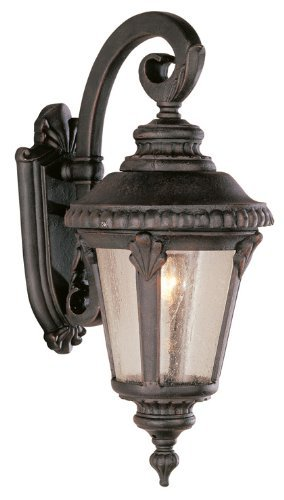 - Trans Globe Lighting 5043 RT Outdoor Commons 19