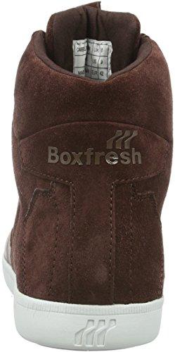 Boxfresh Camberwell Icn Lea/Sde - Zapatillas abotinadas Hombre Marrón