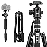 Travel Camera Tripod, Abithid 65'' Portable and Compact Aluminum DSLR Monopod Tripod with 360°Panorama 36 mm Ball Head 1/4 Quick Release Plate for Travel and Work