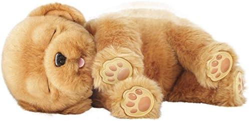 Little Live Pets–Interaktive Sleepy Puppy, Hund bunt