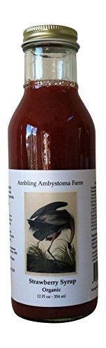 Strawberry Syrup Organic, 12 oz. (Gluten Free Organic Corn Syrup)