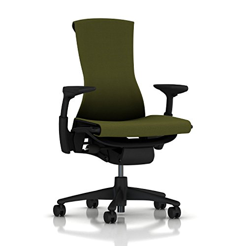Herman Miller Embody Ergonomic Office Chair   Fully Adjustable Arms and Carpet Casters   Green Apple Rhythm