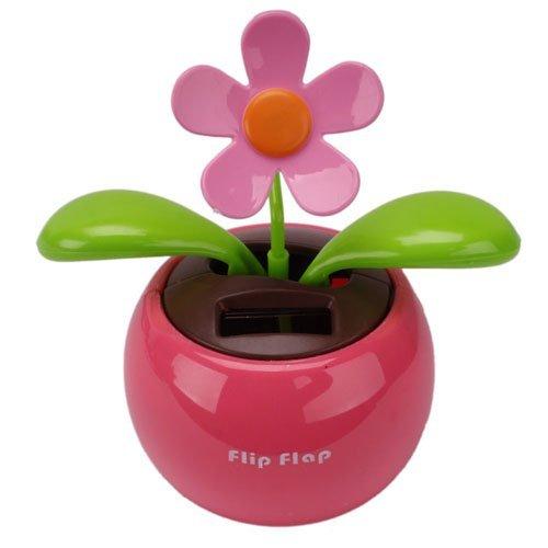 Flip Flap Flower - 4