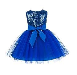 Sparkling Sequins Mesh Tulle Flower Girl Dress