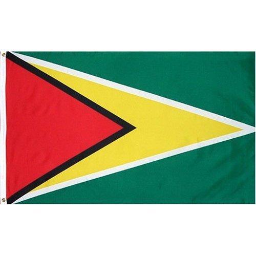 Guyana Flag Polyester 3 ft. x 5 ft.