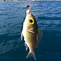 Amazon.com: ZNCMRR - Juego de señuelos de pesca (30 piezas ...