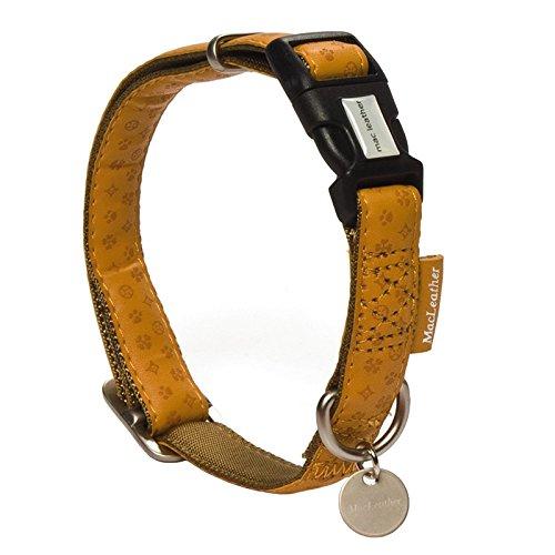 Acheter un collier pour chien pas cher que choisir - Electricite moins cher que choisir ...