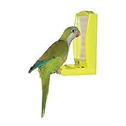 OurPets Mirror Mate Interactive Bird Mirror Interactive Toy