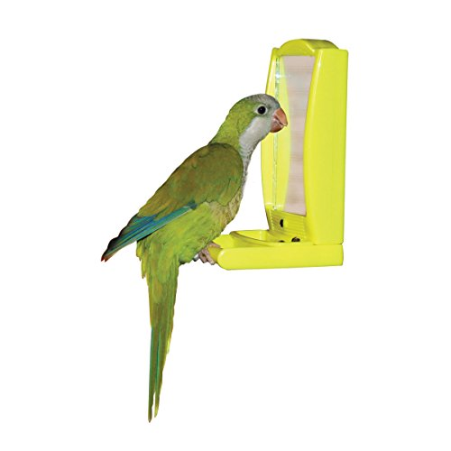 Cages Bird Cage Mirror With Perch