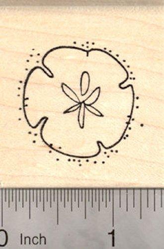Sand Dollar Rubber Stamp