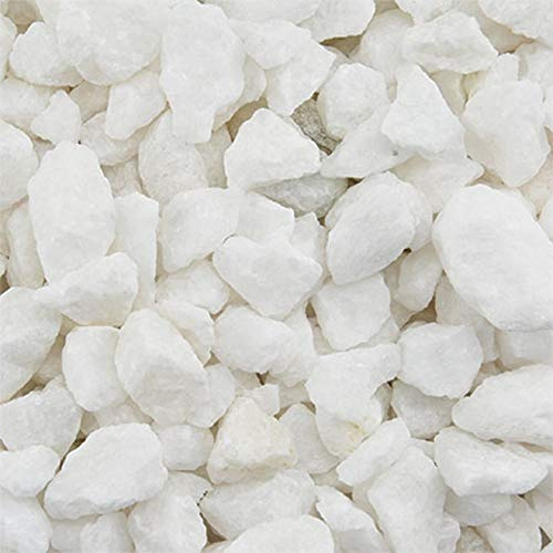 (WeJe 10 LBS Decorative River Pebbles Rocks Stones for Home Decor Art Craft Vase Filler Gravel (White Marble Stones))