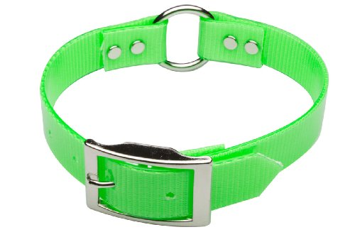 Premier Nite Lite Day-Glo Collar in Neon Green, Ring in Center, 1″ x 25″, My Pet Supplies