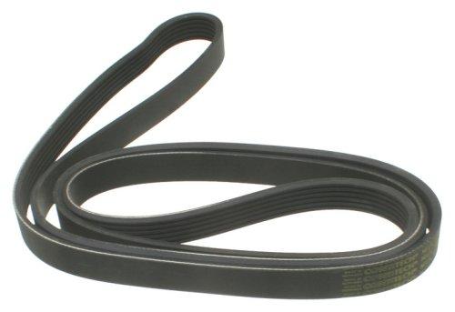 ContiTech Multi Rib Belt W0133-1779583-CON