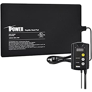 iPower 8