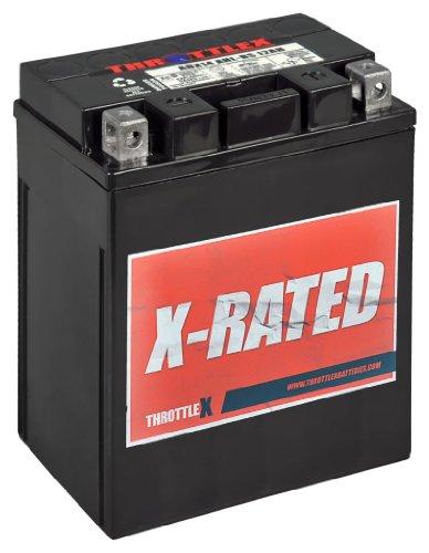ThrottleX Batteries - ADX14AHL-BS - AGM Replacement Power Sport Battery (Throttlex Batteries)
