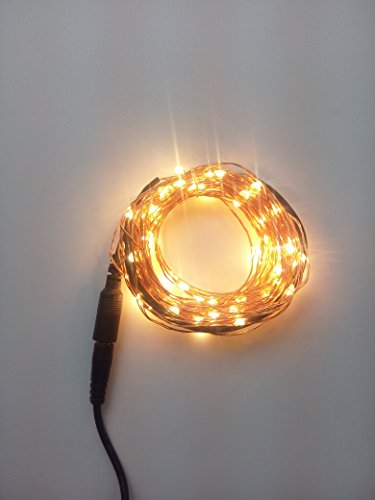 LUISHA 33ft Waterproof Twinkle Lights, Copper Wire String Lights for Party, Wedding, Xmas, Indoor and Outdoor Decor (Warm White)