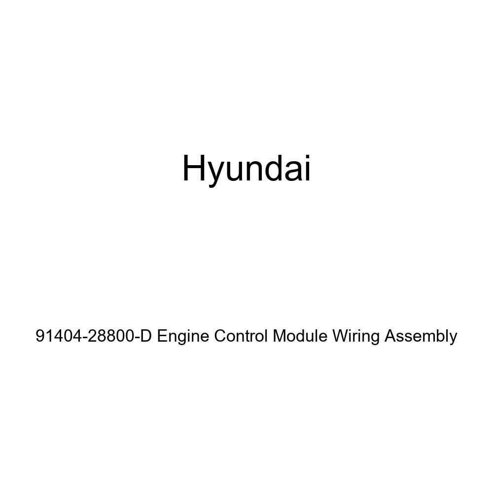 Genuine Hyundai 91404-28800-D Engine Control Module Wiring Assembly