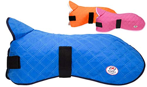 Derby Originals Hydro Cooling Dog Jacket, Reflects Heat & Keeps Dogs Cool for up to 10 Hours (Royal Blue, 12